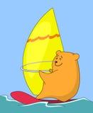 De beer-surfer-beer gaat voor een aandrijving Stock Foto