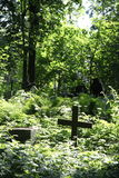 In de begraafplaats Stock Fotografie