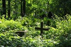 In de begraafplaats royalty-vrije stock afbeelding