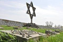De begraafplaats van de Terezinoorlog Stock Foto