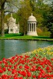 De Begraafplaats van het Bosje van de lente stock afbeelding