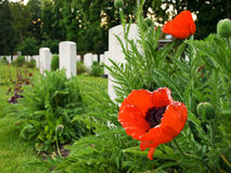 De Begraafplaats van het Reservoir van Ypres stock afbeeldingen