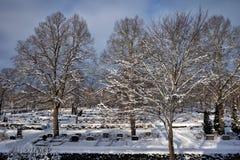 De begraafplaats van Uppsala, Zweden, 16 Januari, 2013 Stock Foto