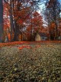 De Begraafplaats van York Stock Fotografie