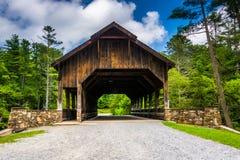 De behandelde brug boven Hoogte valt, in het Bos van de Staat van Dupont, noch royalty-vrije stock afbeelding