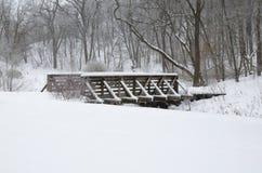 De Behandelde Brug van het Park van Kaposia Sneeuw royalty-vrije stock afbeeldingen