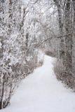 De behandelde Weg van de Winter Stock Foto