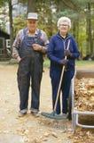 De bejaarde landbouw Stock Afbeelding