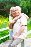 De bejaarde oudsten koppelen Royalty-vrije Stock Foto