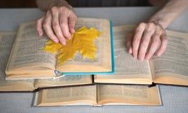 De bejaarde persoonshanden met geopende boeken, sluiten omhoog, geselecteerde nadruk, onduidelijk beeld royalty-vrije stock afbeelding