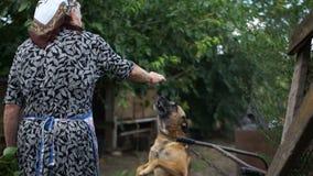 De bejaarde plattelandsespelen met een puppy De jonge hond zit op een ketting Droevig Landschap Eenzaamheid, armoede stock video