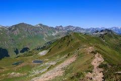 De Belangrijkste Kaukasische Rand zuidelijke die helling met alpiene weiden wordt behandeld royalty-vrije stock foto's
