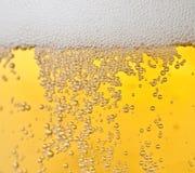 De bellen van het bier Stock Foto's