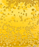 De bellen van het bier Royalty-vrije Stock Foto's