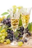 De bemonstering van de wijn Stock Fotografie