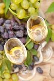 De bemonstering van de wijn Stock Foto's