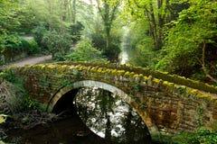 De bemoste Voetgangersbrug van de Steen Royalty-vrije Stock Afbeelding