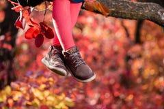 De benen die van het babymeisje op boomtak zitten stock fotografie