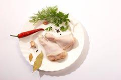De benen van de kip Stock Afbeelding