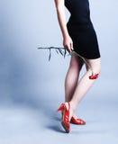 De benen van de schoonheid van vrouw royalty-vrije stock foto's