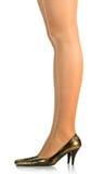 De benen van de vrouw \ 's Stock Afbeeldingen