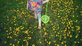 De benen van kinderen gaan door bloeiende paardebloemen in de weide stock video
