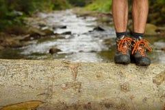 De benen van wandelingsschoenen op boomstam op bergsleep Stock Afbeelding