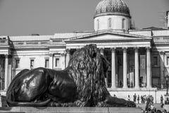 De berömda lejonen på Trafalgar Square i London - LONDON - STORBRITANNIEN - SEPTEMBER 19, 2016 Royaltyfria Foton