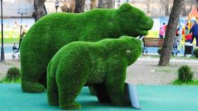 De Beren Kunstmatig gras Royalty-vrije Stock Foto
