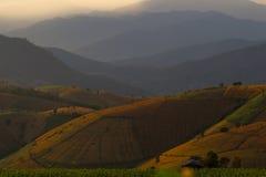 De berg bereikt landschap, Pah Pong Piang in maejamchiangmai een hoogtepunt Royalty-vrije Stock Foto's