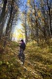 De Berg Biking van de vrouw Stock Foto