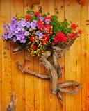 De berg bloeit samenstelling Stock Afbeeldingen