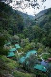 De berg brengt in San Gerardo de Dota onder Stock Foto