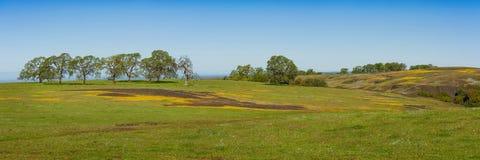 De Berg Ecologische Reserve van de het noordenlijst, Oroville, Californië Stock Afbeeldingen