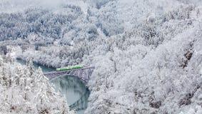 De berg en de sneeuw van Japan stock foto