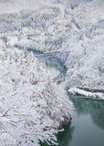 De berg en de sneeuw van Japan met lokale trein royalty-vrije stock foto's