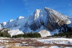 De berg en de weide van de sneeuw royalty-vrije stock afbeelding
