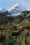 De berg en de weide van de sneeuw stock afbeelding