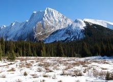 De berg en de weide van de sneeuw stock foto's