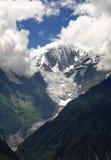 De berg en het bos van de sneeuw Stock Afbeeldingen