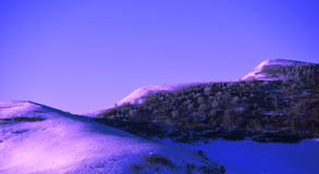 De berg en het bos van de sneeuw Stock Fotografie