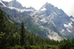 De berg en het bos van de sneeuw royalty-vrije stock foto's