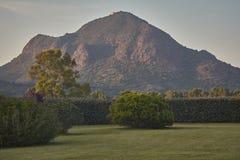 De berg in de tuin Royalty-vrije Stock Afbeeldingen