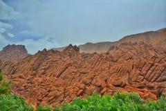De berg van de aappalm Royalty-vrije Stock Afbeelding