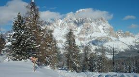 De Berg van alpen Royalty-vrije Stock Afbeelding