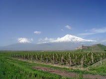 De Berg van Ararat, Armenië Stock Foto