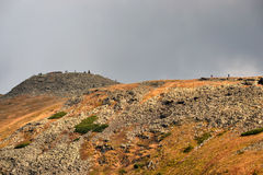 De Berg van Babiagóra in Beskidy, Polen Stock Foto