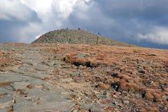 De Berg van Babiagóra in Beskidy, Polen Royalty-vrije Stock Fotografie