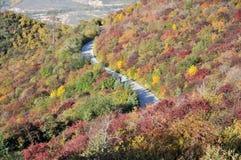 De berg van de herfst Mt Stock Foto's
