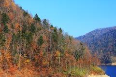 De berg van de herfst toneel stock foto